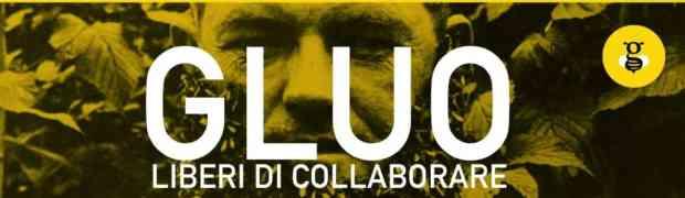 Nasce Gluo, la prima piattaforma collaborativa del volontariato